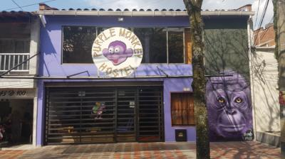 Albergues - Purple Monkey Hostel