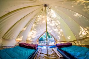 Albergues - Valencia Glamping