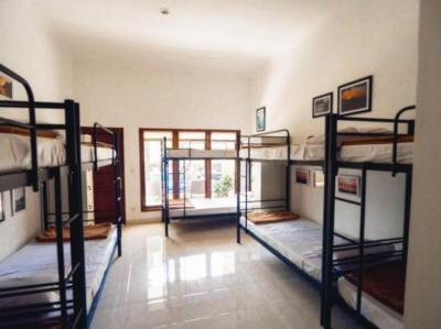 Albergues - Hostel Uluwatu Backpackers